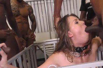 Негры выебали толпой блондинку секс рабыню в хвост и в гриву